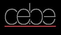 Är du Cebe belysnings nya Ljusdesigner i Stockholm?